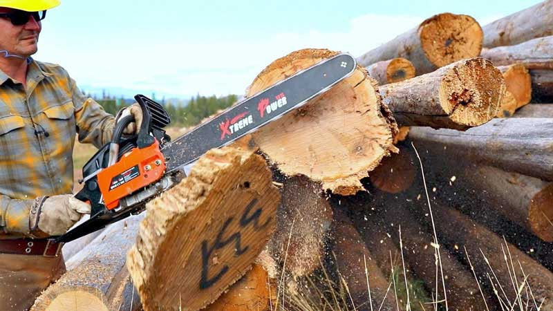 How Do Chainsaws Work