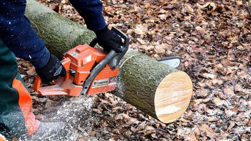 Best Chainsaw Gloves Review