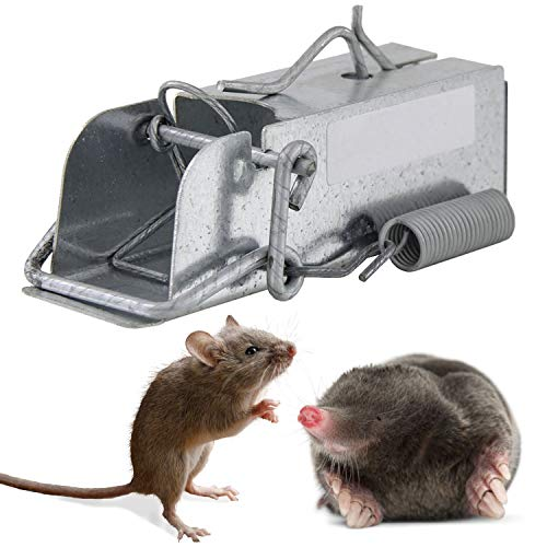 Outdoor Rodent Trap Secure Mice